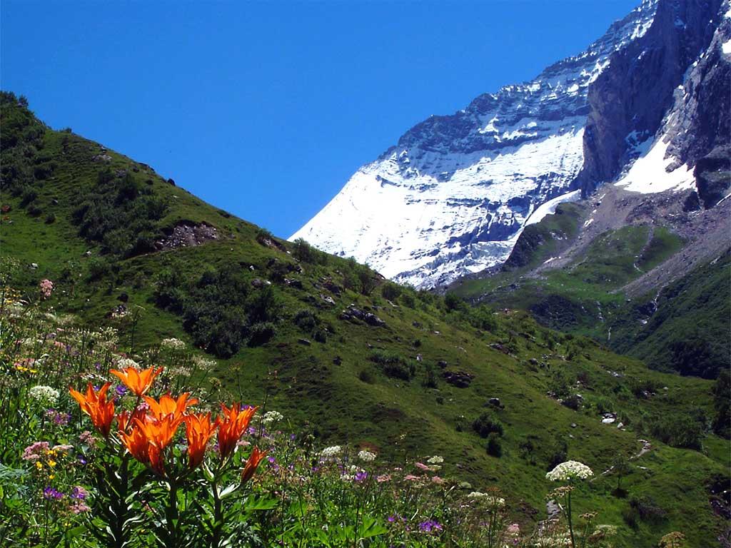 Fonds d 39 cran la montagne en t for Fond ecran montagne